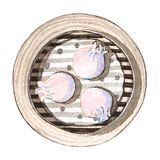 Watercolor asian food dim sum, top view. Watercolor tasty asian food dim sum. Delicious chinese dumplings in bamboo steamer on white background. Hand drawn Royalty Free Stock Images