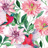 Watercolor asters and birds seamless pattern Stock Photography