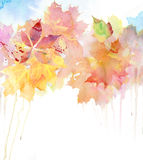 Watercolor autumn background. Stock Photos