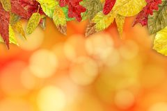 Watercolor autumn background Royalty Free Stock Photography