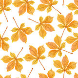 Watercolor autumn chestnut leaves seamless pattern. Vector autumn background vector illustration