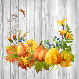 Watercolor Autumn Composition Royalty Free Stock Photography