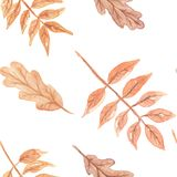 Watercolor Autumn Fall Hand Painted Seamless Pattern Stock Photos