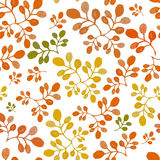 Watercolor autumn floral seamless Stock Photo