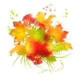 Watercolor autumn foliage Stock Image
