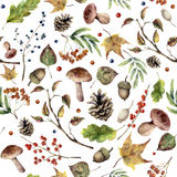 Watercolor autumn forest pattern. Hand painted mushroom, rowan, fall leaves, tree branch, pine cone, berry and acorn. Isolated on white background. Nature royalty free illustration
