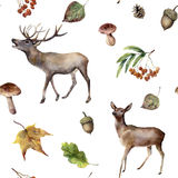 Watercolor autumn forest seamless pattern. Hand painted ornament with deers, rowan, mushrooms, acorn, fall leaves. Isolated on white background. Wild nature Stock Photos