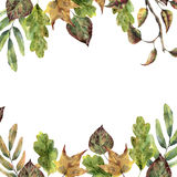 Watercolor autumn frame with fall leaves. Hand painted leaves and tree branch isolated on white background. Seasonal. Border for design royalty free illustration