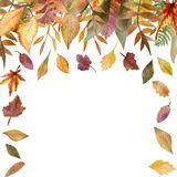 Watercolor autumn frame of tree branches with colorful leaves. Autumn illustration for beautiful design of wedding invitations, holiday greetings, posters royalty free illustration