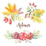 Watercolor autumn leaves, flowars and berries Royalty Free Stock Photography