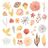Watercolor autumn leaves, flowars and berries. Set of Watercolor red flowers, branches, orangel leaves, red ripe berries and other plants. Autumn forest floral stock image