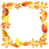 Watercolor autumn leaves square frame Royalty Free Stock Photo