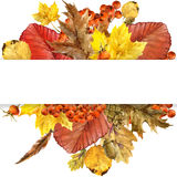 Watercolor Autumn nature leaves background Royalty Free Stock Image