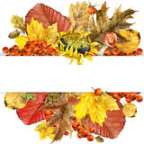 Watercolor Autumn nature leaves background Stock Images