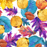 Watercolor Autumn nature leaves background Stock Photography