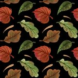 Watercolor autumn pattern with leaves. Black background. Watercolor autumn pattern with leaves. background. Black royalty free illustration