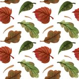 Watercolor autumn pattern with leaves. foliage. background. Watercolor autumn pattern with leaves. background vector illustration