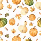 Watercolor autumn pattern of leaves and pumpkins isolated on white.perfect for your dersign. royalty free illustration
