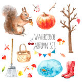 Watercolor autumn set. Royalty Free Stock Images