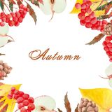 Watercolor autumn set  with rowan, leaves, mushrooms, apples, cones, flowers and berries royalty free illustration