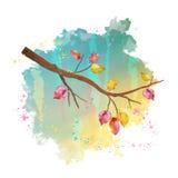 Watercolor autumn tree branch Stock Photo