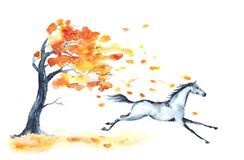 Watercolor autumn tree with red leaves and grey galloping horse on white. vector illustration