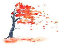 Watercolor autumn tree with red leaves. vector illustration