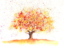 Watercolor autumn tree Stock Photography