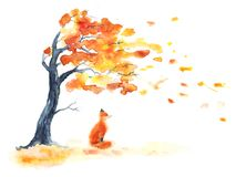 Watercolor autumn tree with yellow and orange leaves and red fluffy cute fox on white.