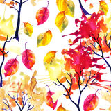 Watercolor autumn trees and leaves seamless pattern Royalty Free Stock Photography