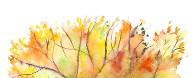 Watercolor autumn yellow orange green tree foliage background Stock Photos