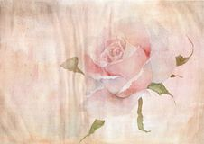 Watercolor background of aged paper, watercolor rose. Watercolor background of aged paper, rose, watercolor paper, crumpled paper, streaks, sprays Vector Illustration