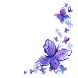 Watercolor background with butterfly in Stock Images