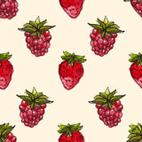 Watercolor background with cherry and raspberry Royalty Free Stock Photos