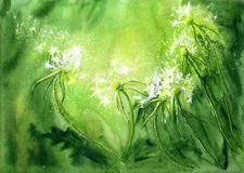 Watercolor background with dandelions Stock Image