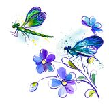 Watercolor background with dragonflies and flowers Stock Photography