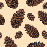 Watercolor background fir cones. Watercolor fir cone pattern. Watercolor pine cone background. Seamless pattern cone. Design for fabric, textile, wrapping paper Stock Images