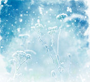 Watercolor background with frozen plants. Blue  watercolor background with snowflakes Royalty Free Stock Image