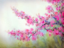 Watercolor background in Japanese style. Flowering branches Royalty Free Stock Image