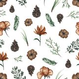 Watercolor background pattern with vintage flowers and twigs. Seamless background pattern with twigs, flowers and fir cones. Watercolor hand drawn illustration Royalty Free Stock Photo