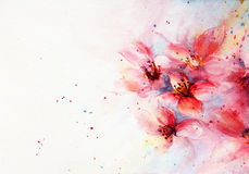 Watercolor background pink blossom Stock Photos