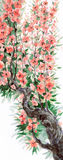 Watercolor background. Spring blooming of an old tree Stock Photo