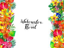 Watercolor Background with tropical plants and flowers Royalty Free Stock Photos