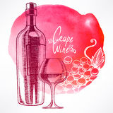 Watercolor background with wine and grapes Stock Image