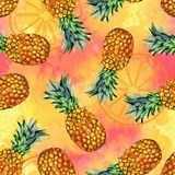 Watercolor fruit, hand painted pineapple illustration stock images