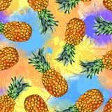 Watercolor fruit, hand painted pineapple illustration stock image