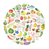 Watercolor banner of the biodiversity. Watercolor biodiversity conceptual illustration of healthy foods. Collection of fruits, vegetables, animals, fish and Royalty Free Stock Photos