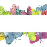 Watercolor banner of bright large colorful butterflies isolated on a white background. Colorful butterfly pattern painted with wat royalty free illustration