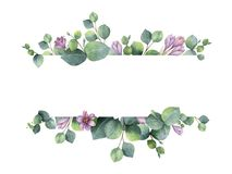 Watercolor banner with green eucalyptus leaves, purple flowers and branches. Watercolor hand painted banner with green eucalyptus leaves, purple flowers and royalty free illustration