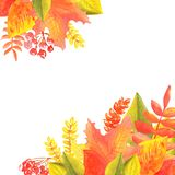 Watercolor banner of leaves and branches isolated on white background. Autumn illustration vector illustration